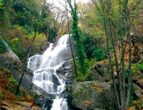 Ruta Cascadas de las Nogaleas