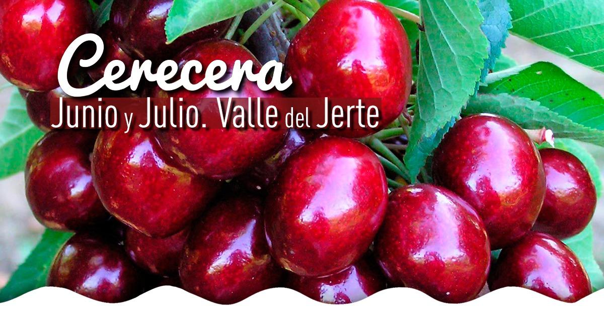 Cerecera-en-el-Valle-del-Jerte-2017