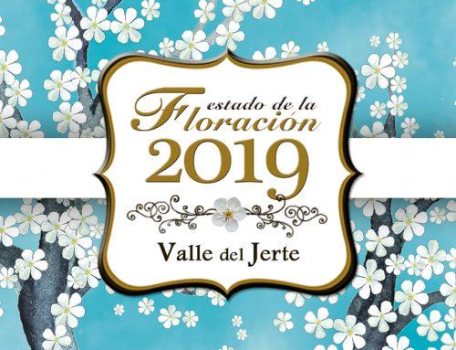Primavera y Cerezo en Flor 2019